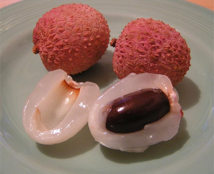 Lychee, exotic fruit-exotic-tropical fruits quiz